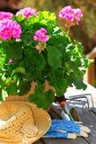 Outils de jardinage Photographie stock libre de droits