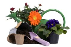 Outils de jardinage 5 photos libres de droits