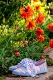 Outils de jardinage colorés dans le jardin Photo libre de droits