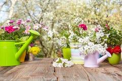 Outils de jardinage extérieurs Images libres de droits