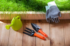 Outils de jardinage neufs, plateau de canne Photo libre de droits