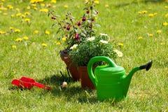 Outils de jardinage neufs, plateau de canne Photographie stock