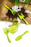 outils et au sol de jardin verts pour planter des fleurs sur la vue supérieure de fond blanc de table Image libre de droits