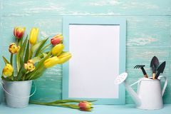 Outils et fleurs de jardinage Photo stock