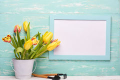 Outils et fleurs de jardinage Photos stock