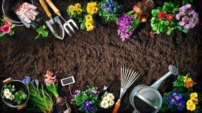 Outils et fleurs de jardinage sur le sol photographie stock