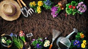 Outils et fleurs de jardinage sur le sol photos libres de droits