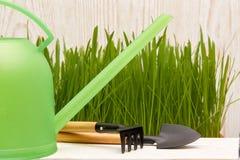 Outils et herbe de jardinage Image stock