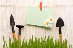 Outils et herbe de jardinage Photos stock