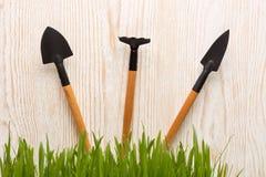 Outils et herbe de jardinage Photo libre de droits