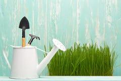 Outils et herbe de jardinage Photographie stock libre de droits