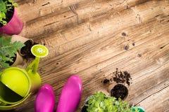 Outils et herbes de jardinage extérieurs Photographie stock