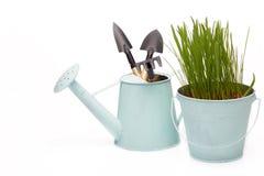 Outils et jeunes plantes de jardinage Photo libre de droits