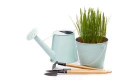 Outils et jeunes plantes de jardinage Photographie stock