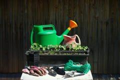 Outils et matériel de jardinage Image libre de droits