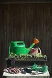 Outils et matériel de jardinage Photo stock