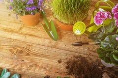 Outils et usines de jardinage extérieurs Photo libre de droits
