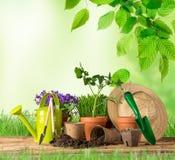 Outils et usines de jardinage extérieurs Image libre de droits