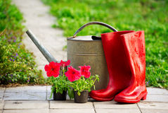 Outils pour travailler au printemps le jardin Photographie stock libre de droits