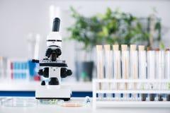 Outils sur le lieu de travail dans le laboratoire biologique moderne photographie stock