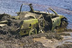 Outing. Old Car in the river, castaway royalty free stock photo