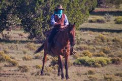 """Outlaw Waiting for a Train. """"Outlaw"""" as seen from the train on the Grand Canyon Railway from Williams Arizona Stock Photography"""
