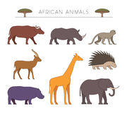 Outline african animals. Linear african animals. Royalty Free Stock Images