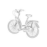 Outline of bicycle, vector illustration. Outline of bicycle isolated on white background. Hand-drawn sketch. Art vector illustration for your design Stock Image