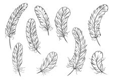 Outline bird feather icons Royalty Free Stock Photography