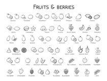 Outline black linear web icon set - Fruit & berries Thin bold Li Stock Photo