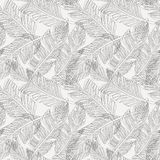 Outline palm leaves white background seamless pattern. Outline black and white graphic tropical branches palm leaves seamless pattern background seamless pattern Royalty Free Stock Photos