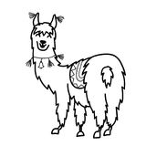 outline cartoon baby llama. Vector illustration of cute character south America lama with decorations.  outline cartoon baby llama. Hand drawn Peru animal Royalty Free Stock Image