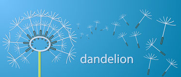Outline dandelion flowers applique banner. Royalty Free Stock Images