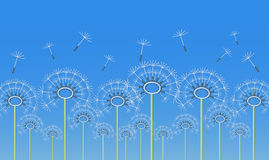 Outline dandelion flowers applique Royalty Free Stock Image