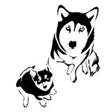 Outline dog and puppy husky top view. Vector template. Can be use for logo and tattoo royalty free illustration