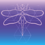 Outline dragonfly vector, Hand drawn beautiful fantasy dragonfly on sacred geometry gradient background. Great as t shirt, tattoo, Stock Photography