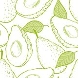 Outline eamless pattern with avocado. And slice Stock Photos