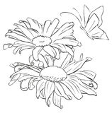 Outline flower for painting Royalty Free Stock Photo