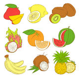 Outline hand drawn colorfull fruit set (flat style, thin line). Royalty Free Stock Photography
