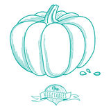Outline hand drawn sketch of pumpkin (flat style, thin  line) Stock Photography