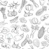 Outline hand drawn vegetable pattern (flat style, thin  line) Royalty Free Stock Image
