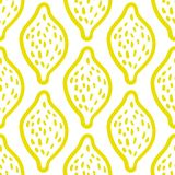 Lemon pattern on white background. Outline hand painted lemon seamless pattern on white background made in vektor Royalty Free Stock Photo