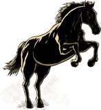 Outline of a horse. Drawing of an outline of a rearing horse Stock Images
