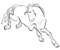 Outline horse drawing. Black and white outline horse vector drawing Stock Photography