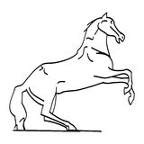 The outline of the horse on its hind legs Stock Photo