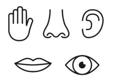 Outline icon set of five human senses: vision eye, smell nose, hearing ear, touch hand, taste mouth with tongue royalty free illustration