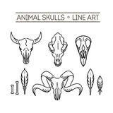 Outline icon skull animals Stock Photos