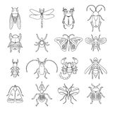 Outline Insects Icons Set Royalty Free Stock Photography