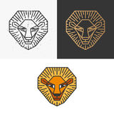 Outline lion symbol. Monochromatic scratched one, golden one for dark background and colorful line lion Stock Photography