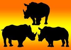 Outline of rhinoceros on background Stock Image